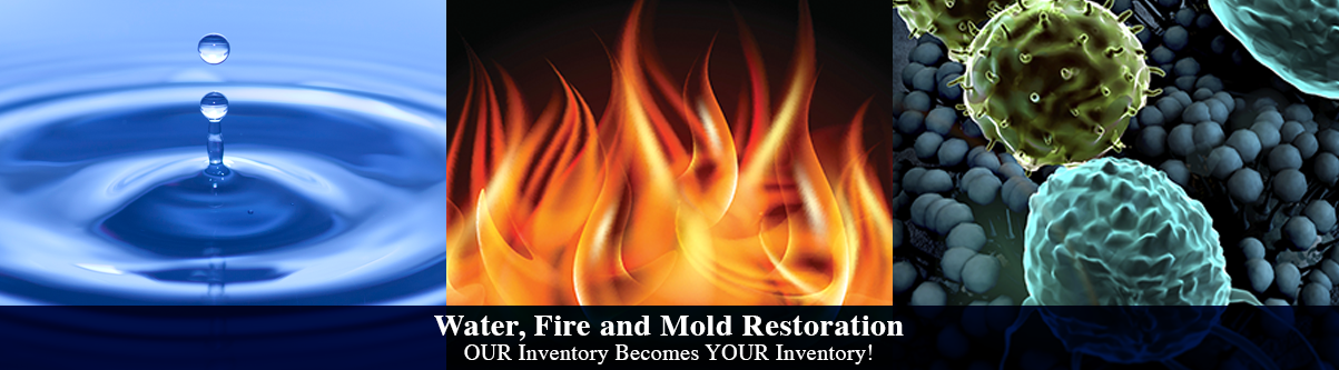water fire mold